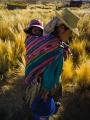 Foto de Érico Hiller, Bolívia - Livro