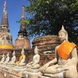 PLURALE, EDIÇÃO 55/ Tailândia, artigos inéditos, comida natural para pets, estudo de caso e muito mais