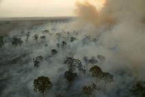 Brasil lidera G20 na redução de emissões de gases de efeitos estufa per capita