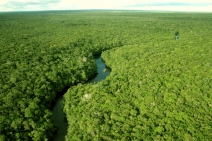 Mineração na Amazônia: os impactos sociais e ambientais que não se pode deixar de lado