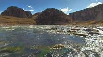Barragens nos Andes ameaçam gravemente a biodiversidade aquática na Amazônia