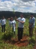 """600 mil mudas são plantadas na Serra da Canastra pelo Projeto """"Plant for the Planet"""" da AccorHotels"""