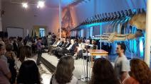 BNDES destina R$ 21,7 milhões  para revitalização do Museu Nacional