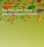 Na Semana Mundial Sem Carne, Greenpeace pede redução de consumo