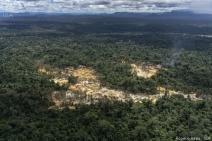 Mapa inédito indica epidemia de garimpo ilegal na Panamazônia