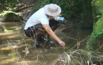 Paraná valoriza quem preserva áreas naturais voluntariamente
