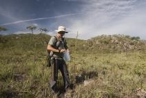 Cerrado é o bioma brasileiro com maior taxa de desmatamento, diz estudo