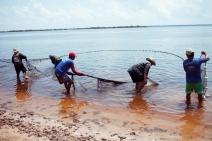 Lojas Americanas faz parceria com a Fundação Amazonas Sustentável