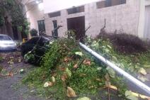 Pelo menos cinco pessoas morreram por conta de Temporal no Rio