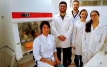 Pesquisa da UFF Friburgo relaciona uso de agrotóxicos a obesidade e diabetes