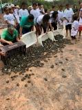 Instituto NET Claro Embratel apoia a preservação de milhares de quelônios na Amazônia