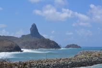 Projetos terão apoio de R$ 1,8 milhão para preservar áreas e espécies no litoral brasileiro