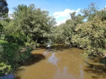 Movimento quer conservar e restaurar bacia hidrográfica no Paraná para contribuir com a segurança hídrica