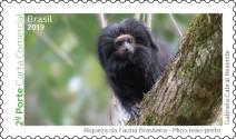 Mico-leão-preto vira selo dos Correios