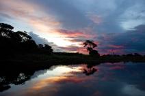 ESTUDO DE CASO -  Sesc Pantanal: um negócio com propósito sustentável