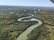 Maior do país, RPPN Sesc Pantanal reúne ecossistemas indispensáveis para espécies ameaçadas como a onça-pintada