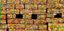 Da lata à lata: acompanhe todo o processo de reciclagem da embalagem de bebidas, um dos melhores exemplos da economia circular
