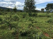 Parque Sesc Serra Azul é pioneiro na utilização da técnica de semeadura direta
