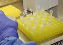 ANS inclui exame para detecção de Coronavírus no Rol de Procedimentos obrigatórios