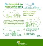Neoenergia reforça importância de agir para proteger o meio ambiente