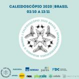 Liga de Intraempreendedores   Brasil está lançando o Caleidoscópio 2020