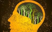 Plurale Edição 71 -  Psicanálise e Sustentabilidade
