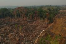 Desmatamento na Amazônia cresce 9,5% e atinge maior valor desde 2008 na medição do sistema PRODES-INPE