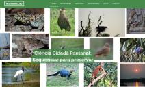 Consórcio fará levantamento inédito no Pantanal para identificar espécies afetadas por queimadas