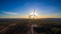 Neoenergia reforça compromisso com a descarbonização e meta de neutralização das emissões até 2050