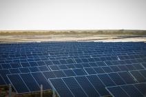 COLUNA VIA SUSTENTÁVEL  -  Energia Limpa, ecocídio & lobbies