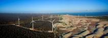 Neoenergia reforça importância da luta contra as mudanças climáticas