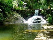ESPECIAL ÁGUA - Qual é o valor da água?