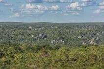 Novo atlas mostra que metade da superfície terrestre é ocupada por biomas não florestais; apenas 12% deles está sob proteção