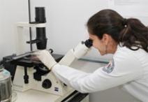 Brasil pode perder conquistas se não voltar a investir em ciência, aponta relatório da Unesco