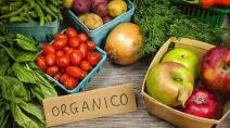 Mercado de orgânicos cresce quase 10%, impulsionado pelo aumento do consumo de alimentos em casa