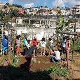 Terreno abandonado e cheio de lixo vira horta agroecológica em comunidade de Vitória (ES)