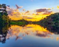Relatório do IPCC, da ONU reforça importância de conservar o que ainda resta de floresta na Amazônia e, para isso, Áreas Protegidas precisam de proteção real