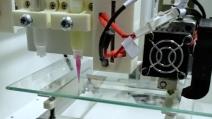 Startup da Coppe desenvolve biotecidos pulmonares para estudar a interação do novo coronavírus