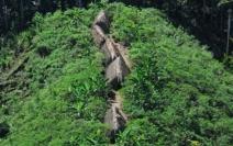 Imagens de satélite comprovam que terras indígenas são as áreas mais preservadas do Brasil nas últimas décadas
