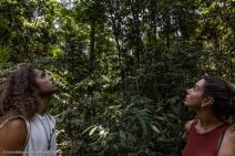 Artistas sobrevoam a Amazônia e constatam a destruição causada pelo fogo e desmatamento