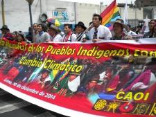 As manifestações, as exposições e a voz do povo em Lima - por Elizabeth Oliveira