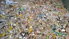 Clean Up The World - Movimento de limpeza das praias no Rio de Janeiro - Fotos de Fernanda Cubiaco