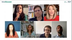 Webinar #EnelFocusOn debate a recuperação verde - Fotos por reprodução