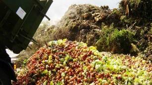 Desperdício de alimento mundial é de um terço