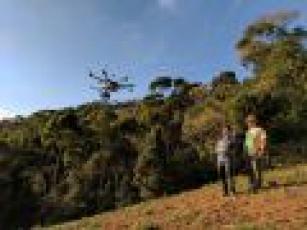 Tecnologia e meio ambiente: muriquis-do-norte serão monitorados por drone
