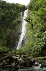 Reserva Natural Salto Morato é opção de tranquilidade em meio ao tumulto das férias de verão