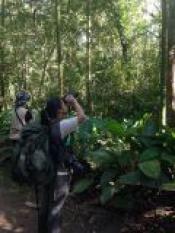 Programa de voluntariado proporciona conhecimento e contato com a natureza