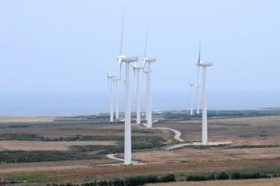 Economia verde pode gerar milhões de empregos na América Latina e no Caribe, diz OIT