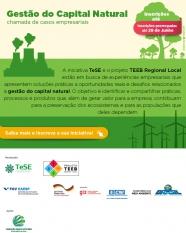 Gestão empresarial de capital natural: valor, preservação e bem-estar
