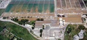 Rio pode economizar R$ 156 mi em tratamento de água com restauração de florestas